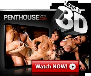Penthouse 3D